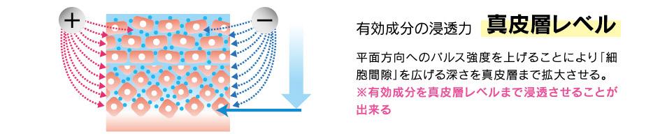 有効成分の浸透力 真皮層レベル 平面方向へのパルス強度を上げることにより「細胞間隙」を広げる深さを表皮層まで拡大させる。※有効成分を真皮層レベルまで浸透させることができる